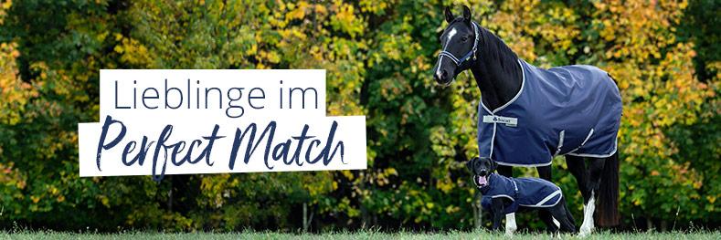 Perfect Match für Pferd & Hund