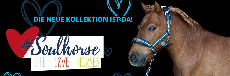#Soulhorse