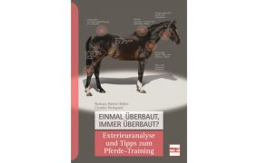 Pferdekauf, Anatomie & Pferdebeurteilung