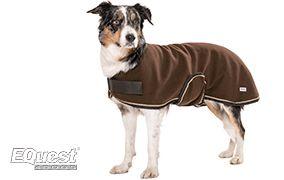 EQuest für Hunde