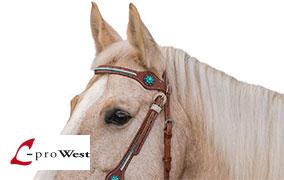 L-pro West Westernzäume