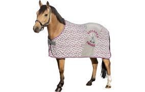 Ponykörper