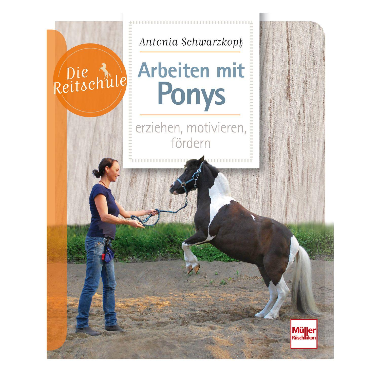 Arbeiten mit Ponys