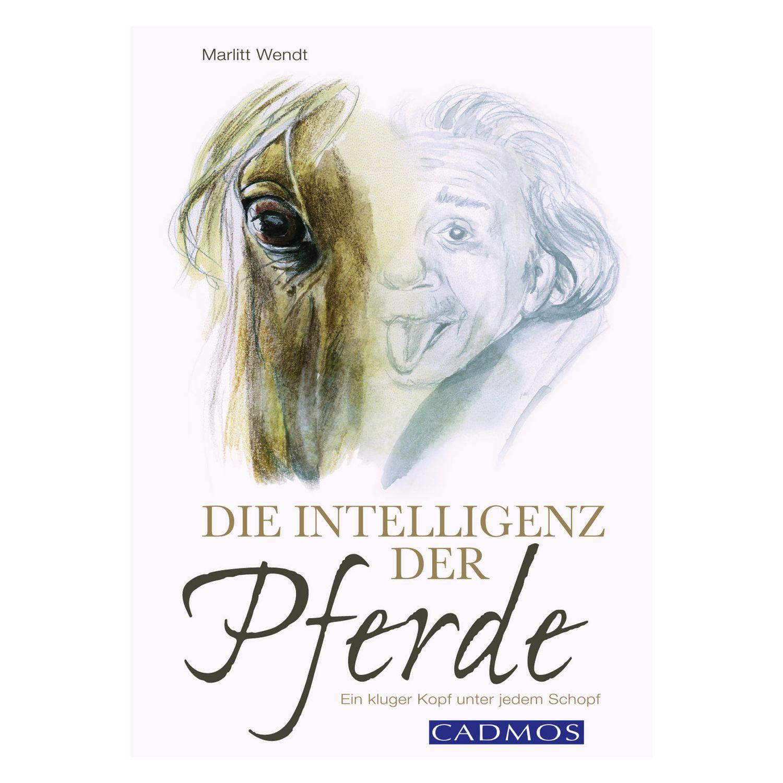 Die Intelligenz der Pferde