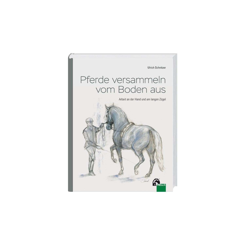 Pferde versammeln vom Boden aus, FNverlag