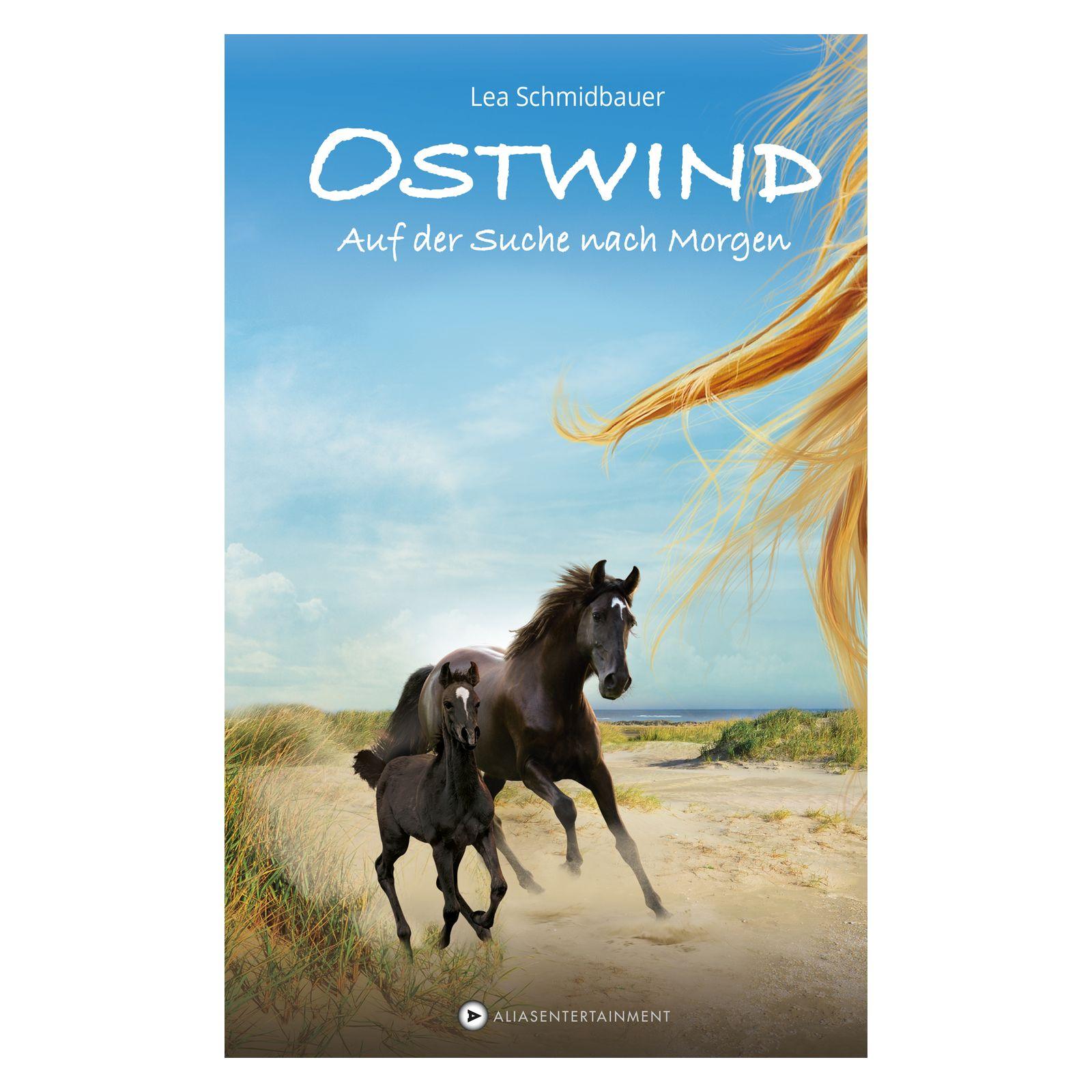 Ostwind - Band 4