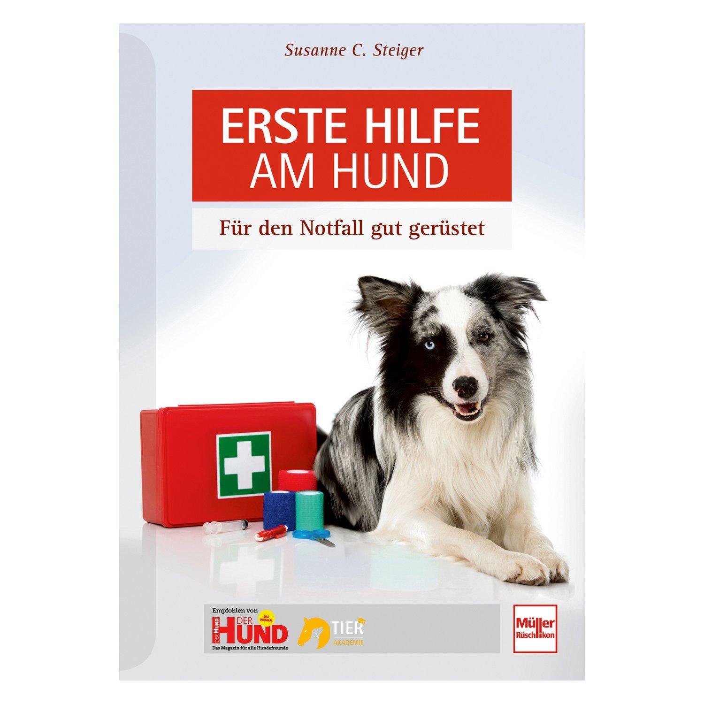 Erste Hilfe am Hund