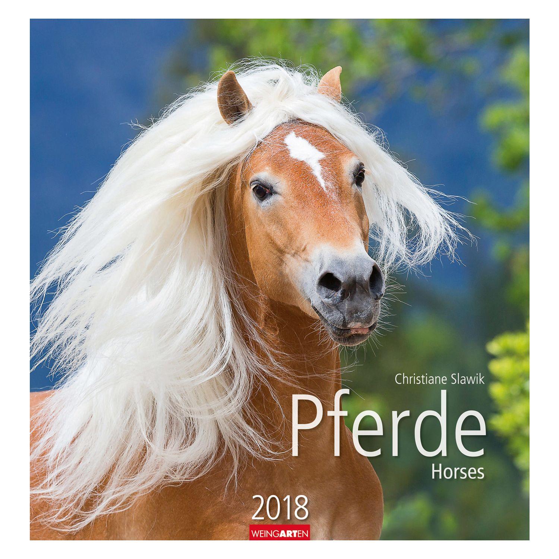 Kalender Pferde