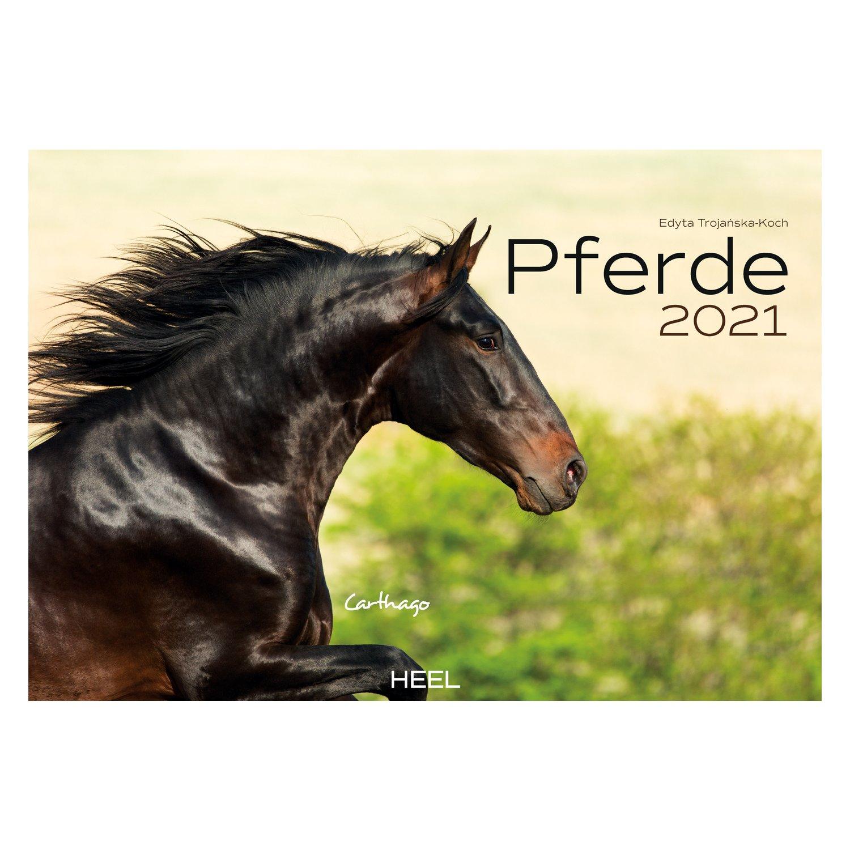 Kalender Pferde 2021