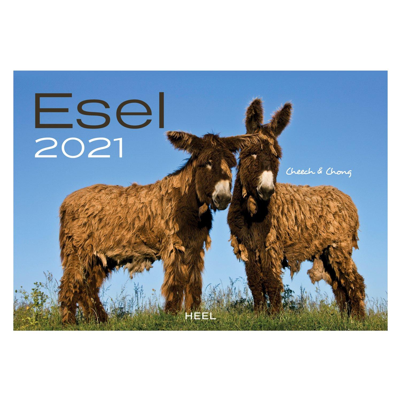 Kalender Esel 2021