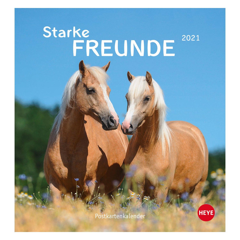 Kalender Pferde - Starke Freunde 2021 2021