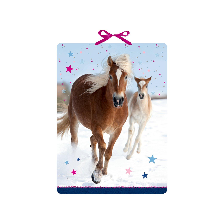 Adventskalender Pferdefreunde im Schnee