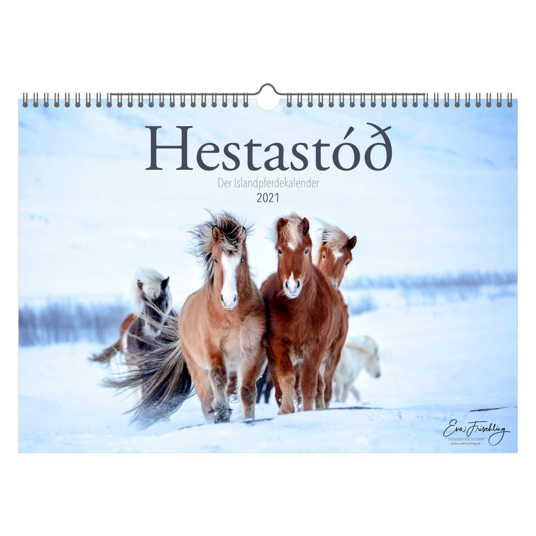 Kalender Islandpferde Hestastod 2021 2021