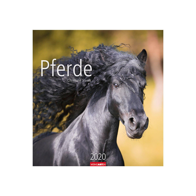 Kalender Pferde 2020 2020