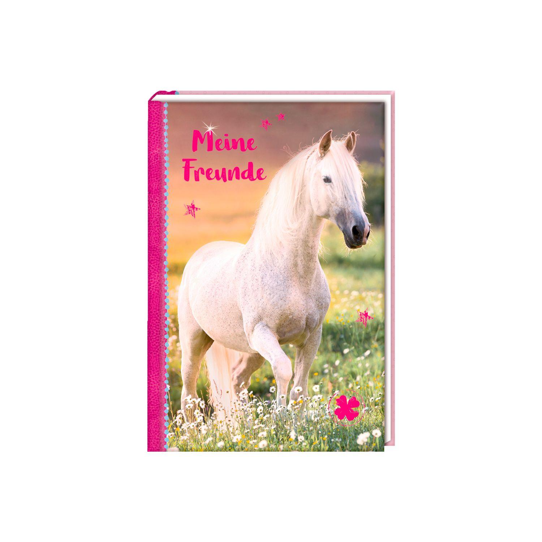 Die Spiegelburg Freundebuch- Meine Freunde