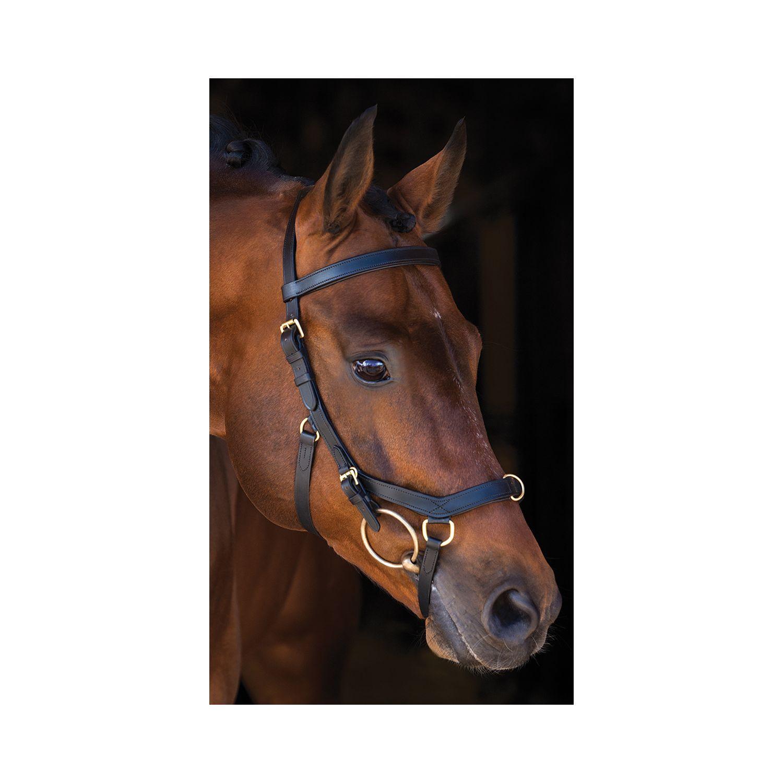 Horseware Trensenzaum RAMBO Micklem Multibridle schwarz | X-Warmblut