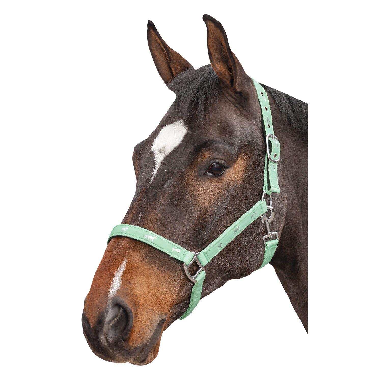Horse-friends Halfter mit Pferdemotiv