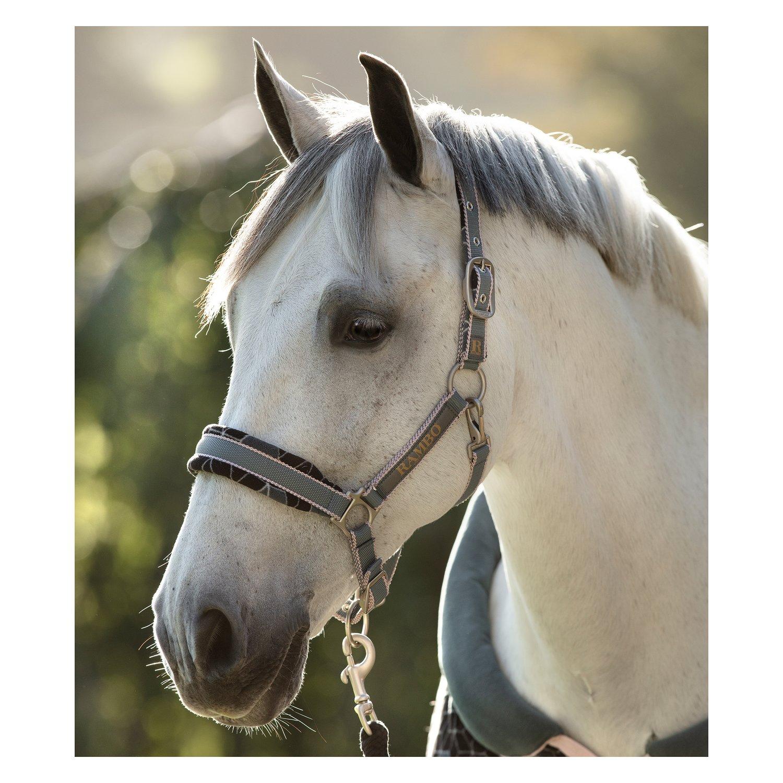 Horseware Halfter RAMBO Padded Headcollar