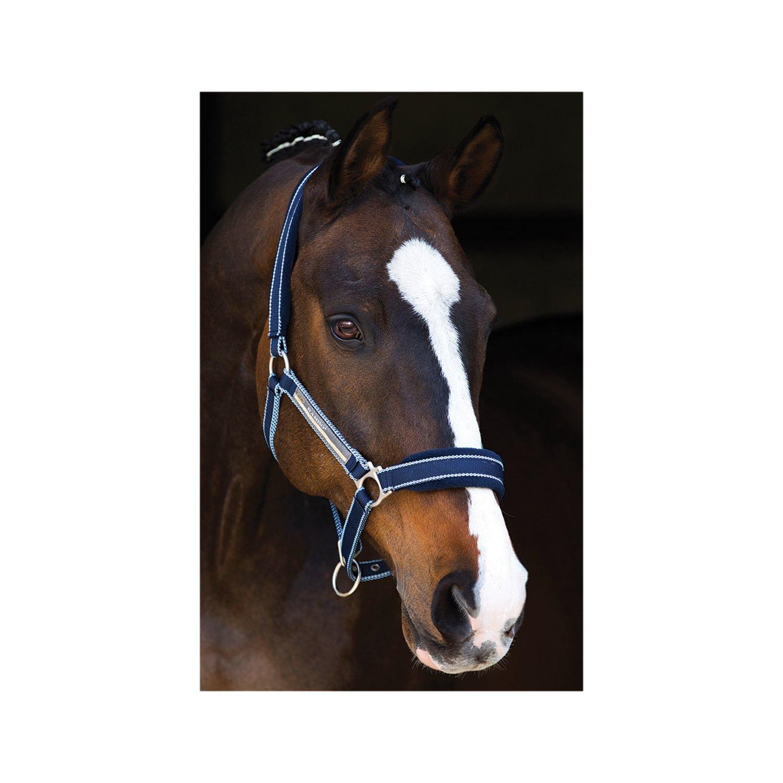 Horseware RAMBO Halfter Padded Headcollar