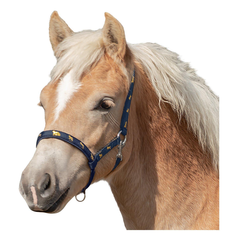 Fohlenhalfter mit Pferdemotiv