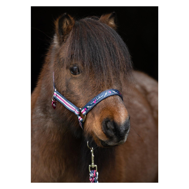 #Soulhorse Halfter Fashion