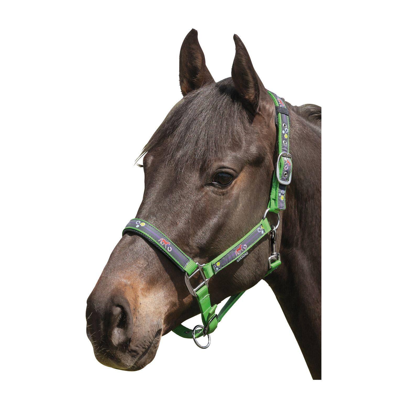 Horse-friends Halfter Reflex