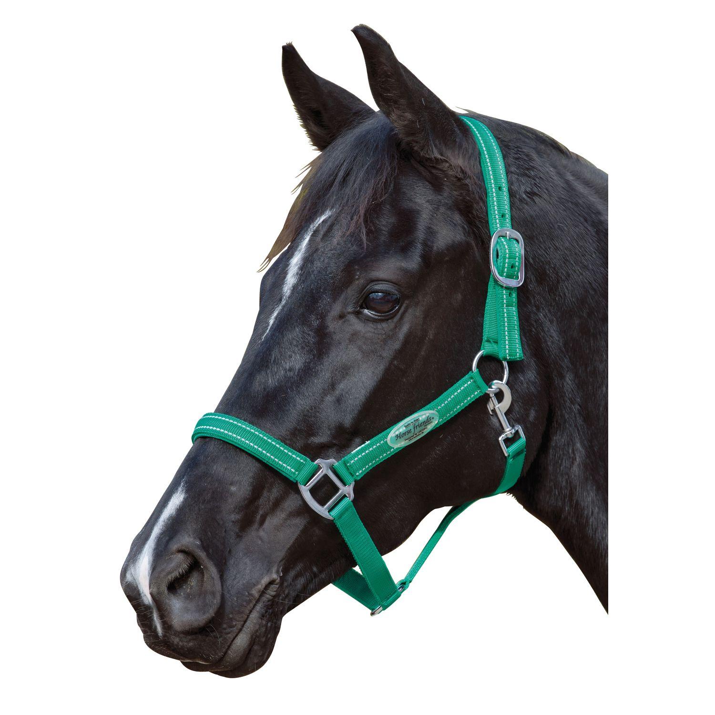 Horse-friends Halfter Basic Reflex