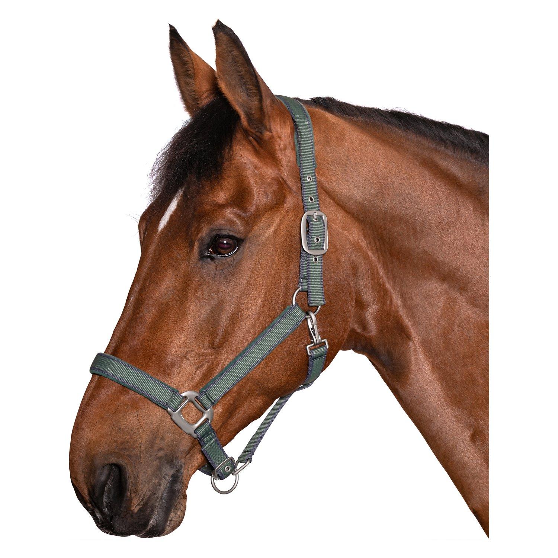Horse-friends Halfter Comfort Soft