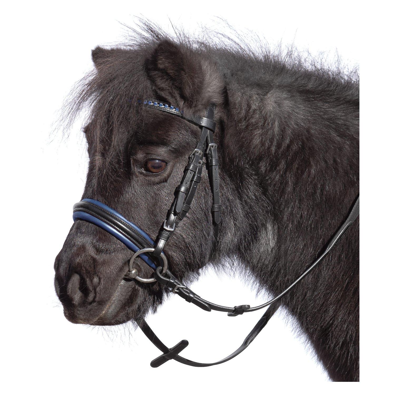 Loesdau Trensenzaum Orlando schwarz/blau | Mini-Shetty