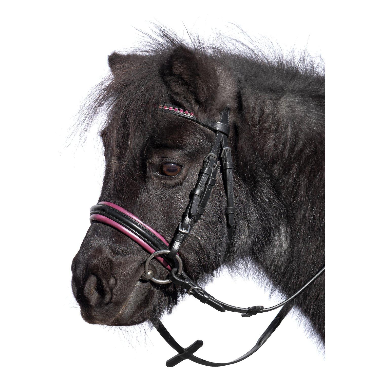 Loesdau Trensenzaum Orlando schwarz/pink | Pony