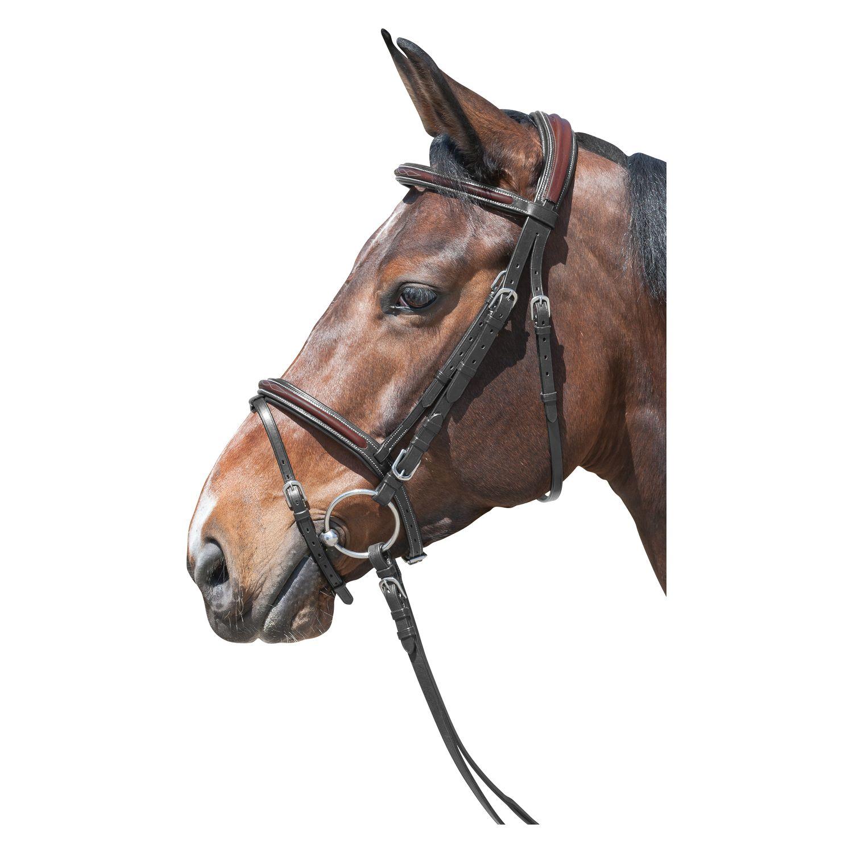 Loesdau Trensenzaum Cancun schwarz/braun | Pony
