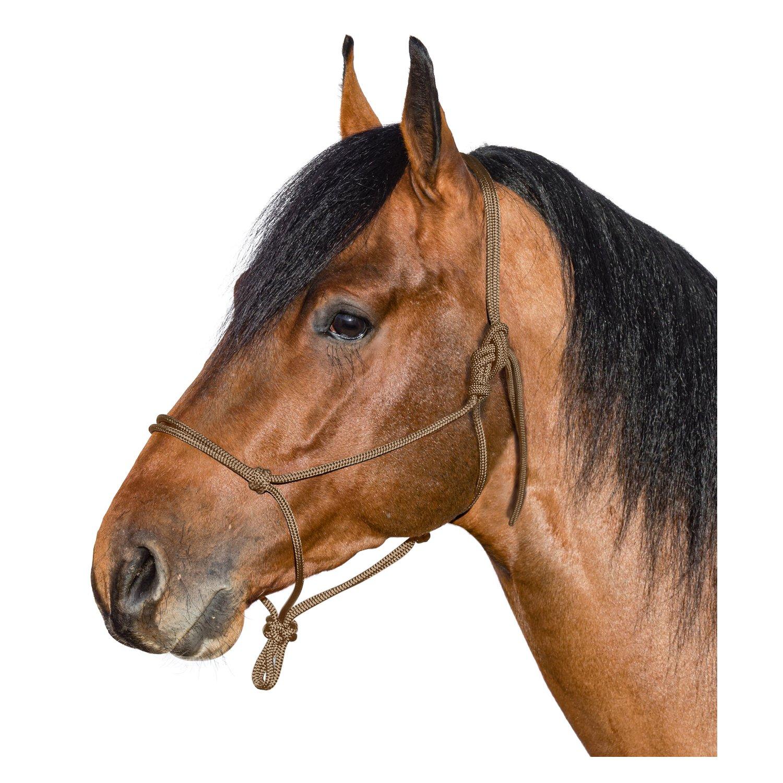 BROCKAMP Knotenhalfter Horse-Man-Halfter beige | Warmblut
