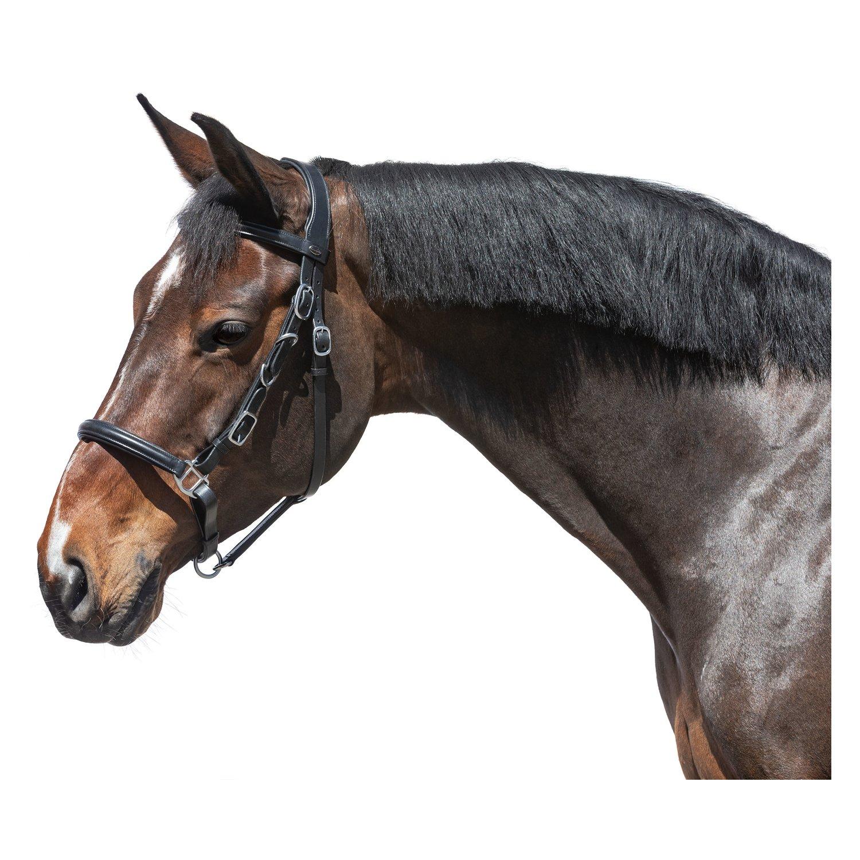 Loesdau Wanderreitzaum schwarz | Pony