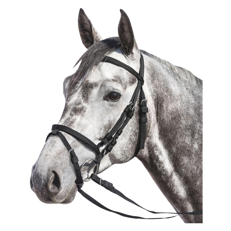 Trensenzaum Nylon schwarz | Pony