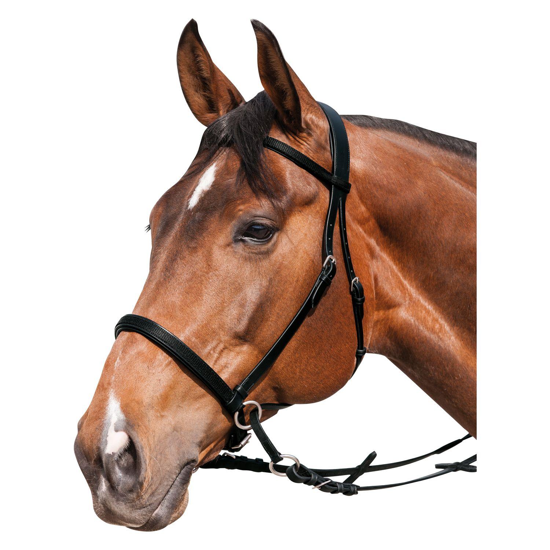 Horse-friends Gebisslose Zäumung