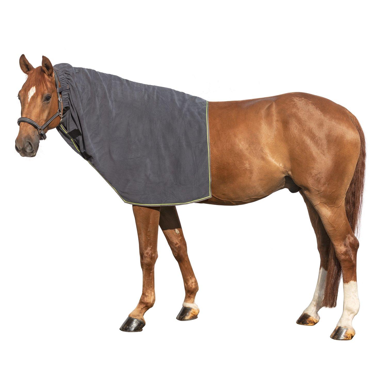 Horse-friends Halsteil