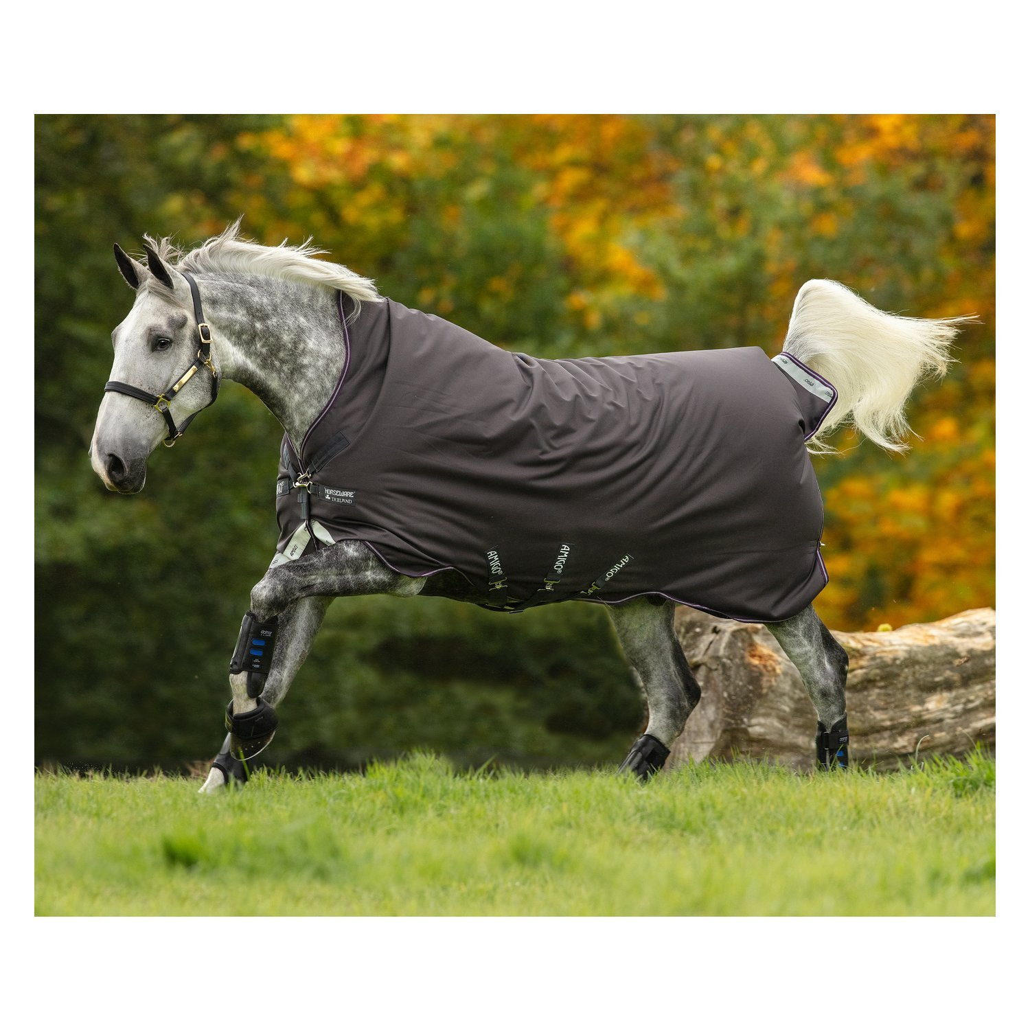 Horseware Outdoordecke AMIGO Bravo 12 Wug Medium