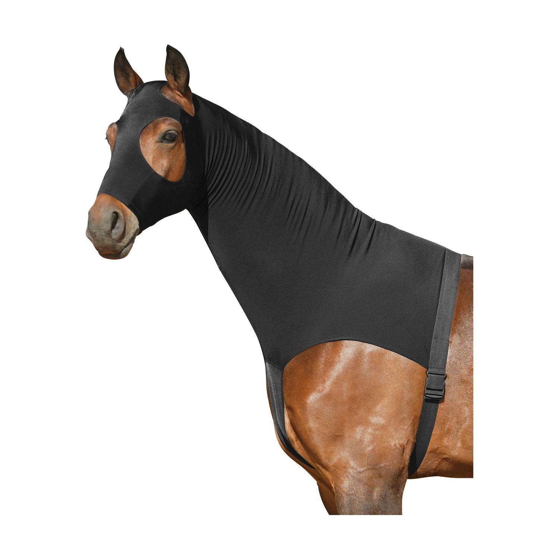 Horse-friends Sleezy
