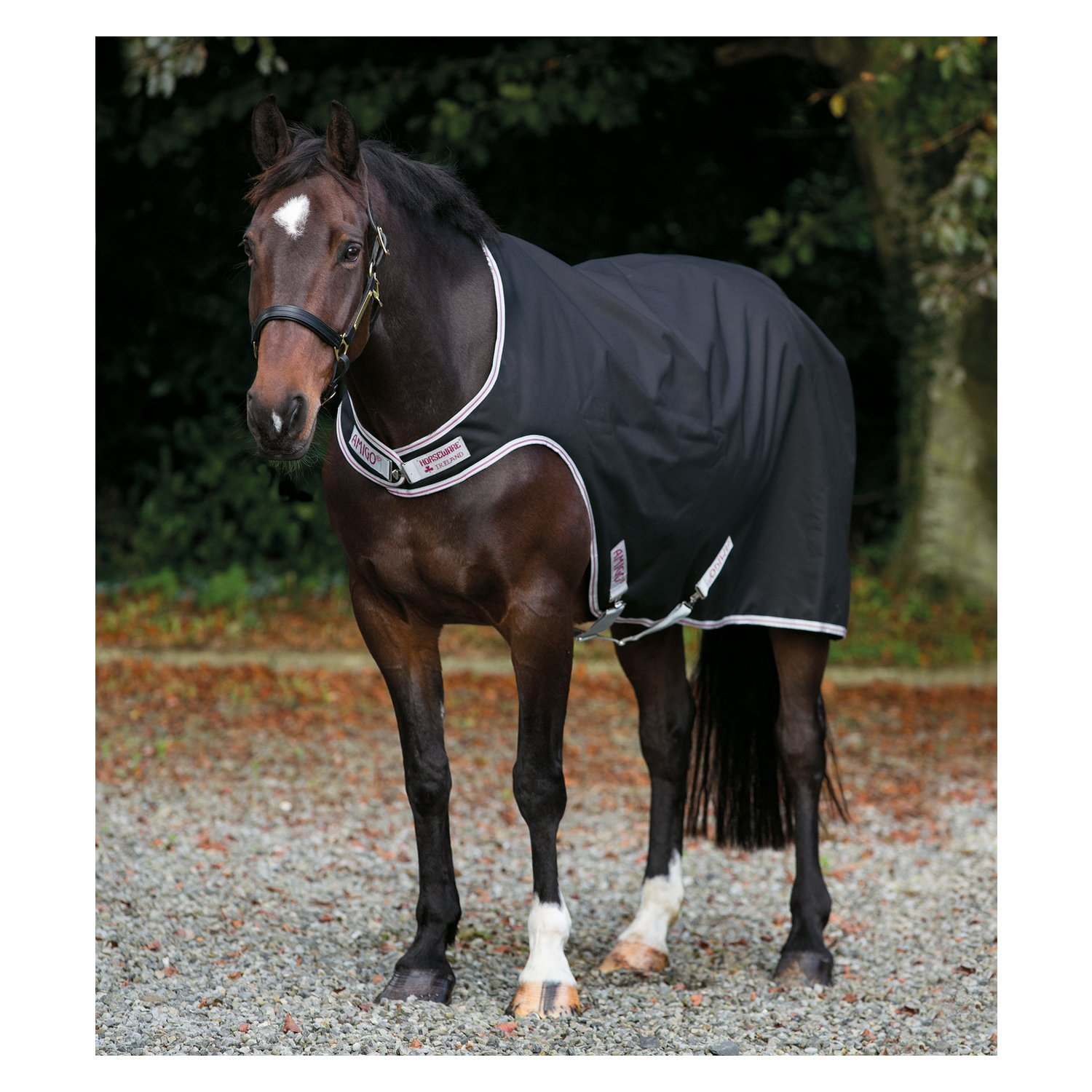 Horseware Führmaschinendecke AMIGO Waterproof Walker black | L (145/155 cm)