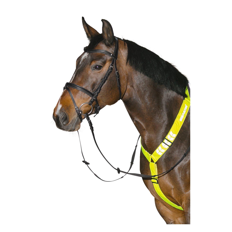 Horse-friends Reflektierendes Vorderzeug