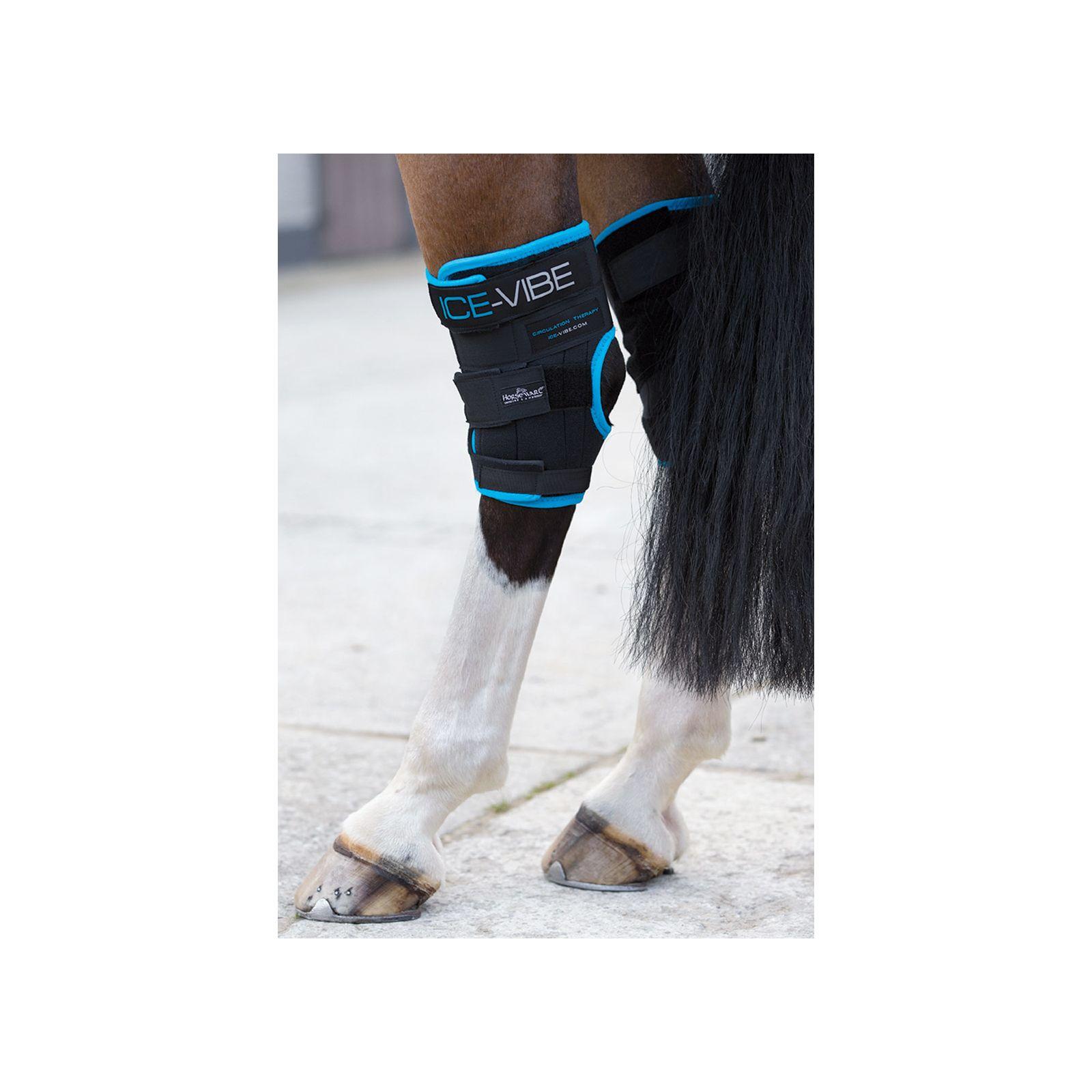 Horseware Ice-Vibe Sprunggelenk-Gamaschen
