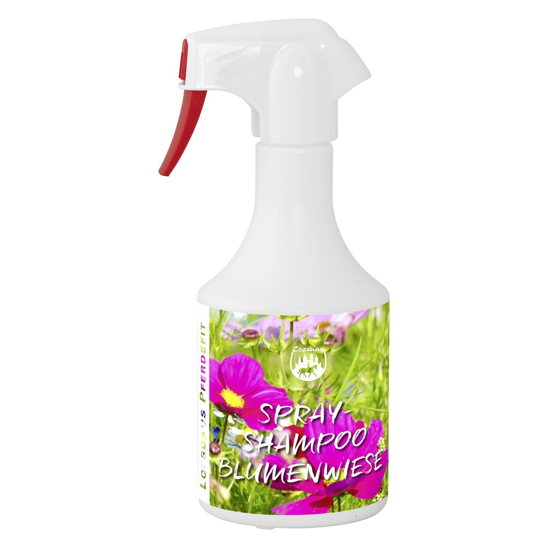 Loesdaus Pferdefit Spray-Shampoo
