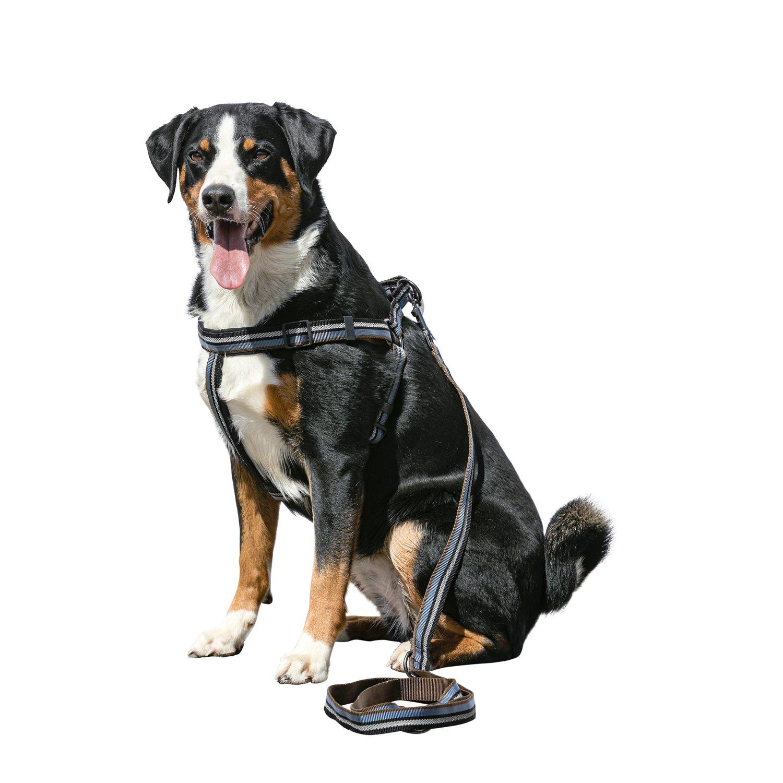 Loesdau Hundegeschirr Wuxi