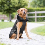 ESKADRON Platinum Hundemantel Glossy black | 65 cm