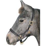 Leder-Halfter Exquisite Foal