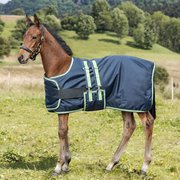 Horse-friends Fohlendecke 100 g