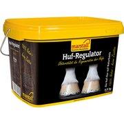 marstall Huf-Regulator