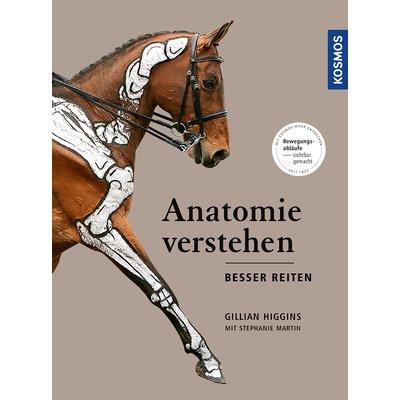 Anatomie verstehen besser reiten