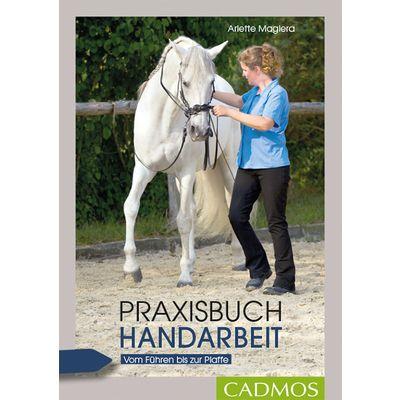Praxisbuch Handarbeit