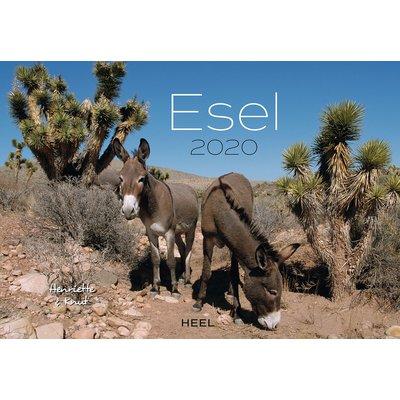 Kalender Esel 2020